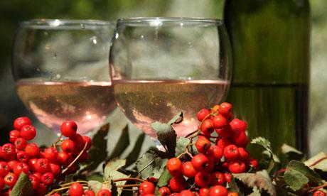 Как сделать вино из рябины? Делаем вкусное домашнее рябиновое вино