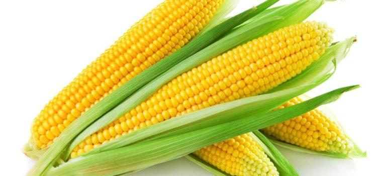 Кукурузные початки. Как…?