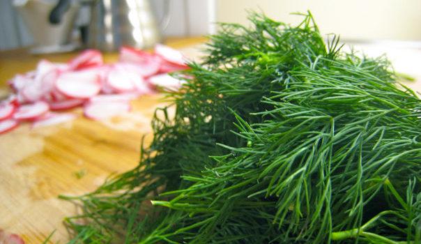 Как посушить зелень